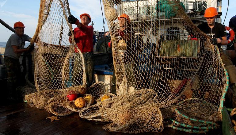 Промысловое рыболовство