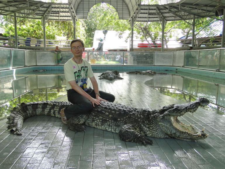 крокодиловая ферма джерба цена