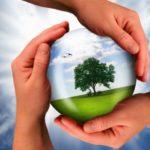 Сколько получает эколог в России
