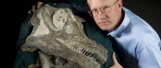 Сколько получает палеонтолог