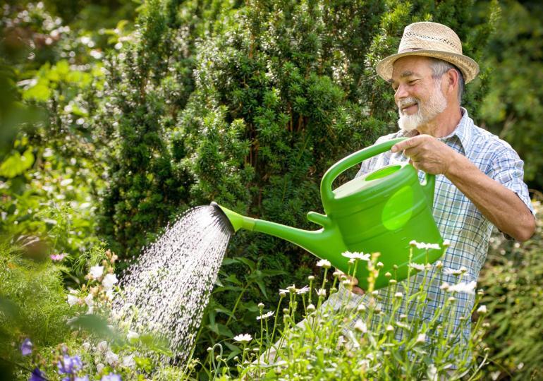 Сколько зарабатывает садовник