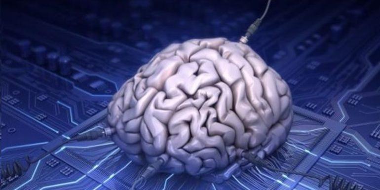 Сколько зарабатывает нейробиолог