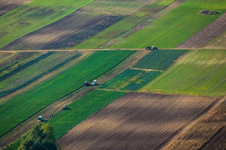 Сельскохозяйственного назначения