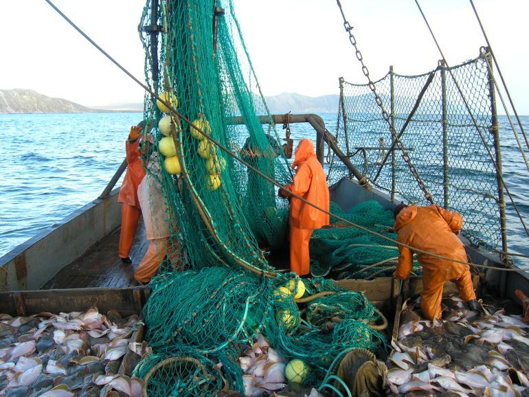 Рыболовы на судне