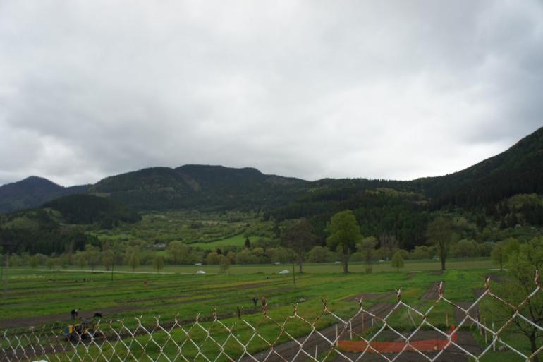 Аренда полей в Словакии
