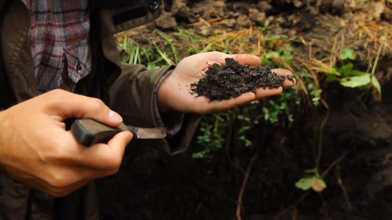 Сколько зарабатывает почвовед